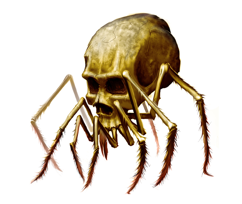 Lord Of Skull Spiders Backstory
